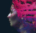 Steven Wilson - Hand. Cannot. Erase. (CD) Digipak