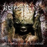 Acephala - Infraction Cerebral Occupation (CD)