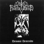 Forever Dead / Amentia / Formaline / Serrando Codos - 4 Way SplitCD (CD)