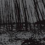 Psykotisk / Vredgad - SplitCD (CD)