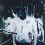To Separate The Flesh From The Bones - Utopia Sadistica (CD)