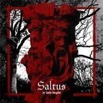 Saltus - W Imie Bogow (CD)