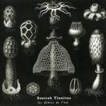 Sostrah Tinnitus - Les Debris De L'ete (CD)