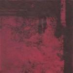 Versus The Stillborn-Minded - Audibly Bleeding (CD)