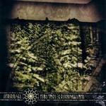 Liholesie (Лихолесье) - Извечное Коловращение (Primeval Rotation) (CD)
