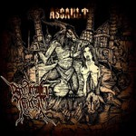 Screaming Forest - Assault (CD)