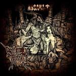 Screaming Forest - Assault (CD)