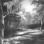 Vermis Mysteriis - Ceremony Of Time / Rex Noctis (CD)