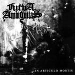 Furva Ambiguitas - In Articulo Mortis (CD)