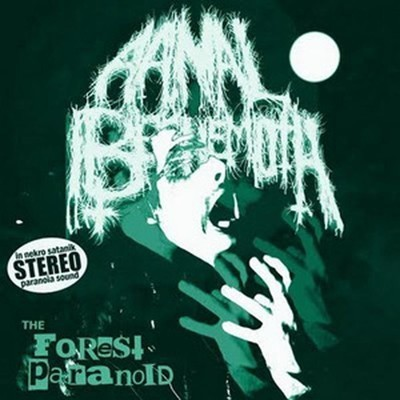 Aanal Beehemoth - The Forest Paranoid (CD)