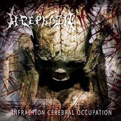 Acephala - Infraction Cerebral Occupation (CD)