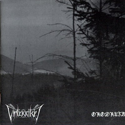 Vinterriket / Orodruin - SplitCD - Das Winterreich / Visions Of The Palantiri (CD)