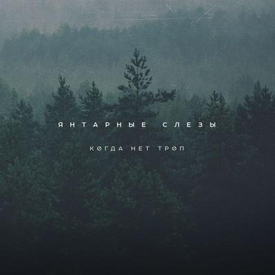 Amber Tears (Янтарные Слезы) - Когда Нет Троп (When No Trails) (CD)