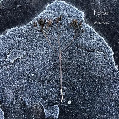 Porosl - Winterhome (CD)